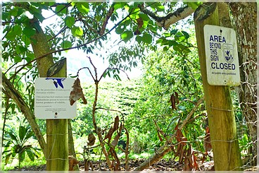 Kaua'i: Hule'ia Wildlife Natural Refuge